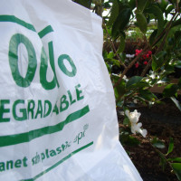 Plant ZERO supplies Quality Plants @ Affordable Prices